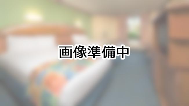 サバンナ・ビュー - クラブレベル(キングサイズ・ベッド)